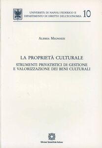 La proprietà culturale. Strumenti privatistici di gestione e valorizzazione dei beni culturali