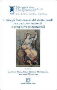Libro I principi fondamentali del diritto penale tra tradizioni nazionali e prospettive sovranazionali