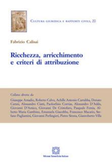 Ricchezza, arricchimento e criteri di attribuzione - Fabrizio Calisai - copertina