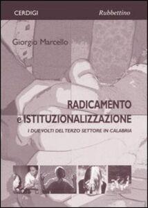 Radicamento e istituzionalizzazione. I due volti del terzo settore in Calabria