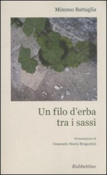 Un filo d'erba tra i sassi - Mimmo Battaglia - copertina