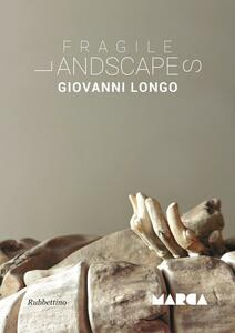 Fragile landscapes - Giovanni Longo - copertina