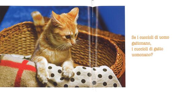 La parola ai gatti - Patrizia Traverso - 2