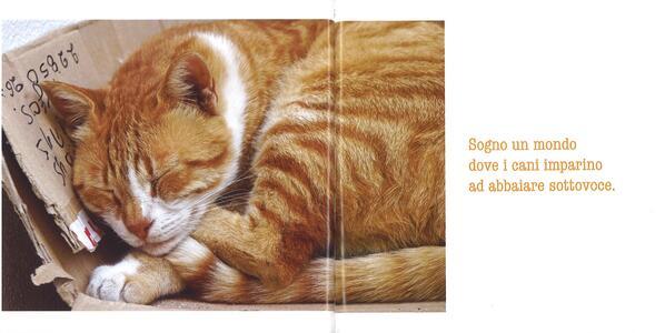 La parola ai gatti - Patrizia Traverso - 3