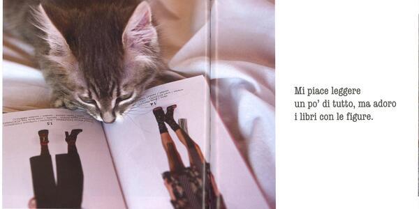 La parola ai gatti - Patrizia Traverso - 4