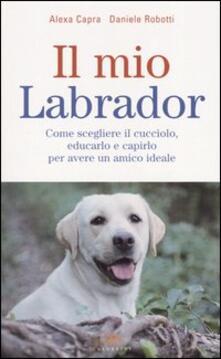 Writersfactory.it Il mio labrador. Come scegliere il cucciolo, educarlo e capirlo per avere un amico ideale Image