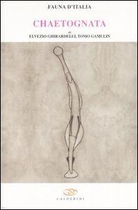 Chaetognatha. Vol. 39