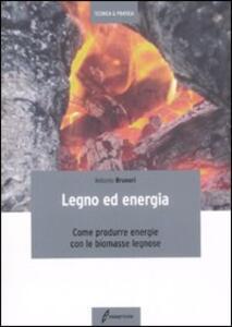 Legno ed energia. Come produrre energie con le biomasse legnose