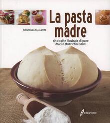 Writersfactory.it La pasta madre. 64 ricette illustrate di pane, dolci e stuzzichini salati Image