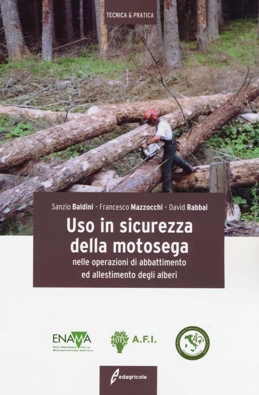 Uso in sicurezza della motosega nelle operazioni di abbattimento ed allestimento degli alberi