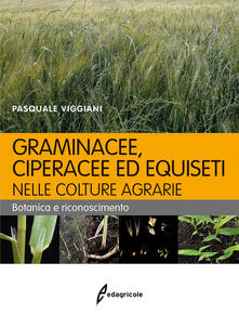 Promoartpalermo.it Graminacee, ciperacee ed equiseti nelle colture agrarie. Botanica e riconoscimento Image
