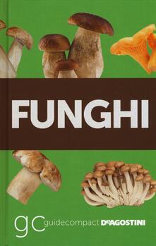 Filippodegasperi.it Funghi Image