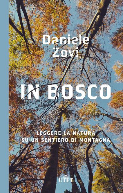 In bosco. Leggere la natura su un sentiero di montagna - Daniele Zovi - copertina