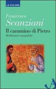 Libro Il cammino di Pietro. Meditazioni evangeliche Francesco Scanziani