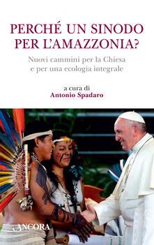 Winniearcher.com Perché un sinodo per l'Amazzonia? Nuovi cammini per la Chiesa e per una ecologia integrale Image