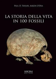 Antondemarirreguera.es La storia della vita in 100 fossili. Ediz. illustrata Image