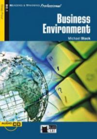 The The Business environment - Black Michael - wuz.it