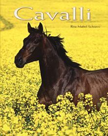 Equilibrifestival.it Cavalli. Ediz. illustrata Image