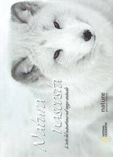 Listadelpopolo.it Natura nascosta. L'arte del mimetismo nel regno animale. Ediz. illustrata Image