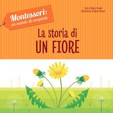 Antondemarirreguera.es La storia di un fiore. Montessori: un mondo di conquiste. Ediz. a colori Image