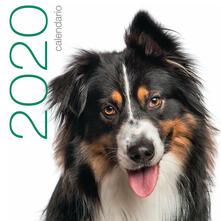 Cani. Calendario da muro 2020.pdf