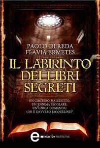 Il labirinto dei libri segreti - Paolo Di Reda,Flavia Ermetes - ebook