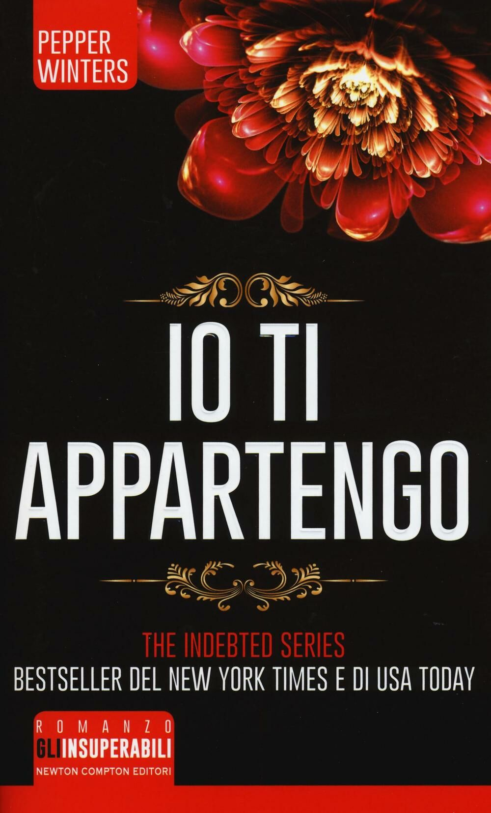 Io ti appartengo. The indebted series