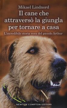 Antondemarirreguera.es Il cane che attraversò la giungla per tornare a casa. L'incredibile storia vera del piccolo Arthur Image