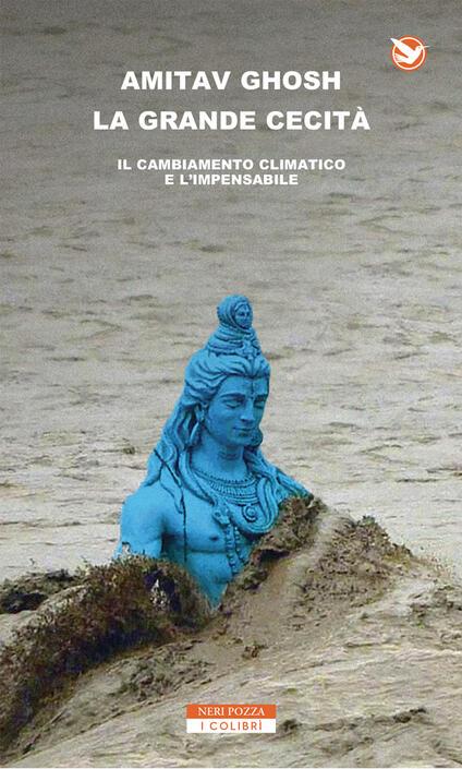 La grande cecità. Il cambiamento climatico e l'impensabile - Norman Gobetti,Anna Nadotti,Amitav Ghosh - ebook