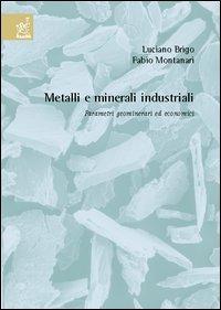 Metalli e minerali industriali. Parametri geominerari ed economici