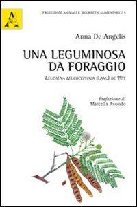 Una Una leguminosa da foraggio. Leucaena leucocephala (Lam.) De Wit - De Angelis Anna - wuz.it