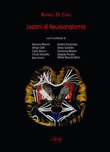 Antondemarirreguera.es Lezioni di neuroanatomia Image