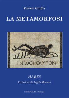 Grandtoureventi.it La metamorfosi. Hare5 Image