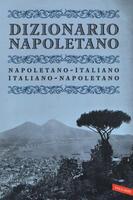 Dizionario napoletano. Nuova ediz.