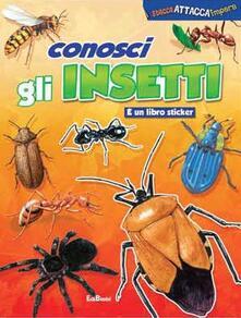 Squillogame.it Conosci gli insetti. Con adesivi Image