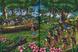 Libro Le avventure del Corsaro Nero di Emilio Salgari Geronimo Stilton 4