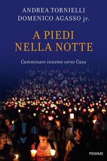 A piedi nella notte. Camminare insieme verso casa - Andrea Tornielli,Domenico jr. Agasso - copertina