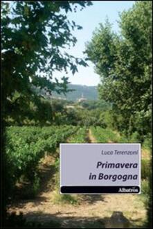 Primavera in Borgogna - Luca Terenzoni - copertina
