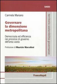 Governare la dimensione metropolitana. Democrazia ed efficienza nei processi di governo dell'area vasta