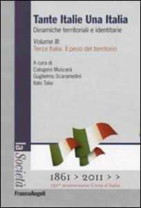 Tante Italie una Italia. Dinamiche territoriali e identitarie. Vol. 3: Terza Italia. Il peso del territorio.