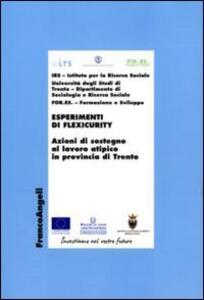 Esperimenti di flexicurity. Azioni di sostegno al lavoro atipico in provincia di Trento