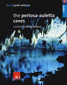 The Pertosa-Auletta caves - copertina