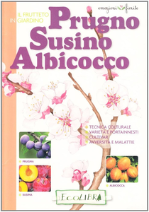 Libro Frutteto in giardino. Prugno, susino, albicocco