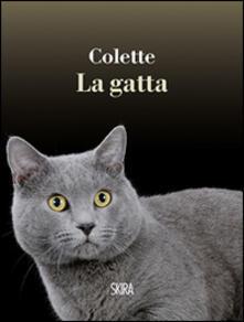 Voluntariadobaleares2014.es La gatta Image
