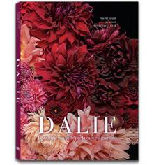 Filippodegasperi.it Dalie. Le cultivar più belle per la casa e il giardino Image