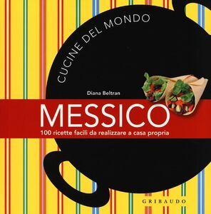 Messico. 100 ricette facili da realizzare a casa propria
