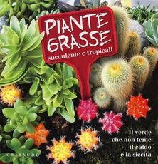 Libro Piante grasse succulente e subtropicali. Il verde che non teme il caldo e la siccità Lorena Lombroso Simona Pareschi