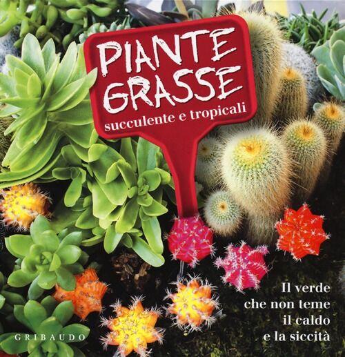Piante grasse succulente e subtropicali. Il verde che non teme il caldo e la siccità