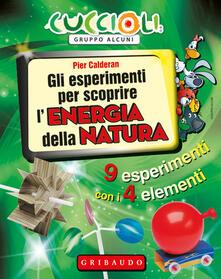 Mercatinidinataletorino.it Gli esperimenti per scoprire l'energia della natura. 9 esperimenti con i 4 elementi. Con gadget Image