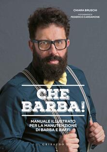 Premioquesti.it Che barba! Manuale illustrato per la manutenzione di barba e baffi Image